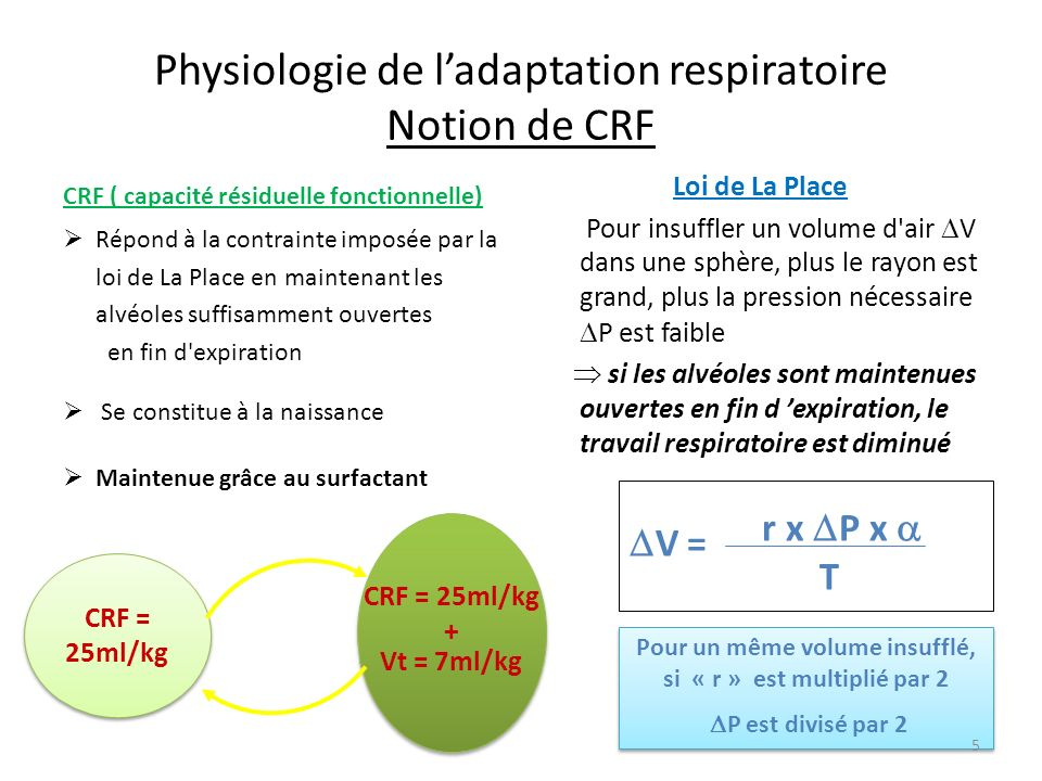 Physiologie de l'adaptation respiratoire Notion de CRF