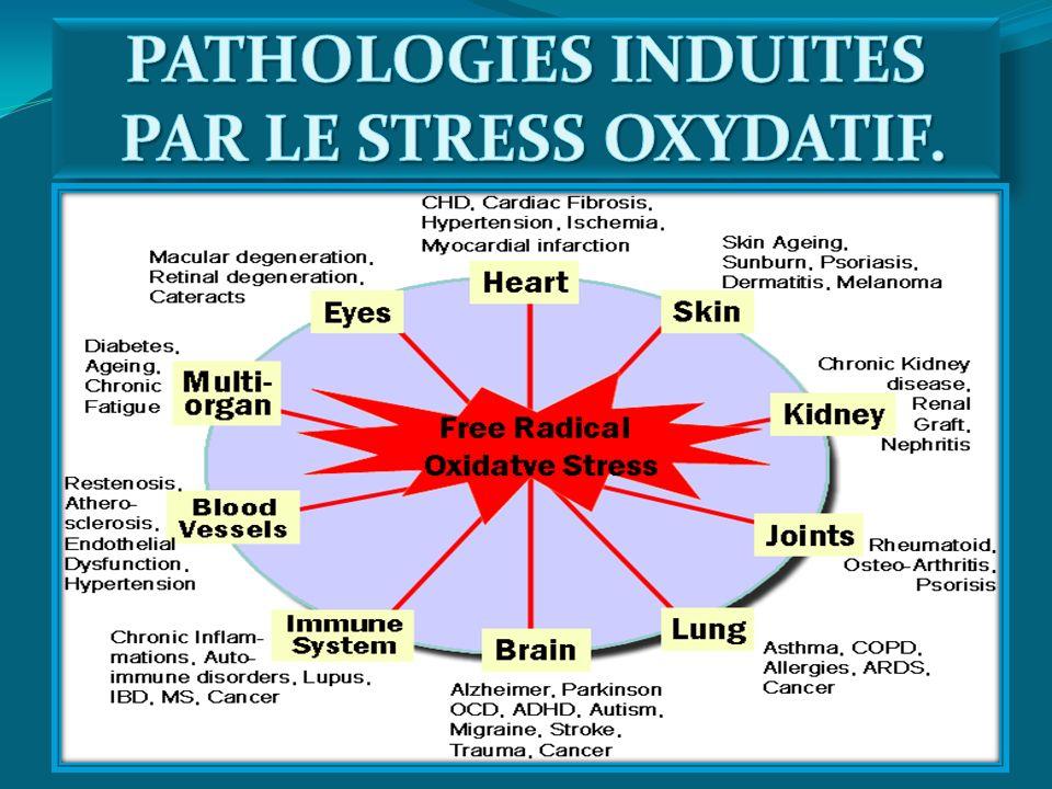 PATHOLOGIES INDUITES PAR LE STRESS OXYDATIF.
