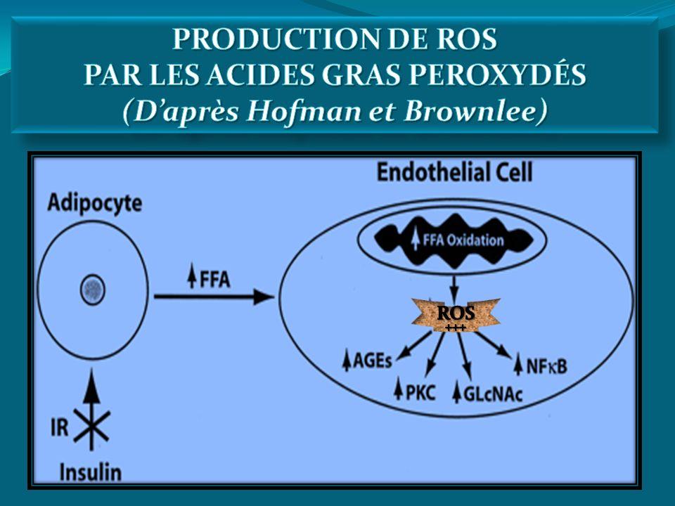 PAR LES ACIDES GRAS PEROXYDÉS (D'après Hofman et Brownlee)