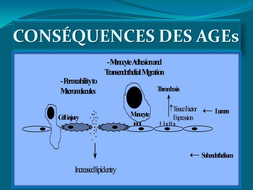 CONSÉQUENCES DES AGEs
