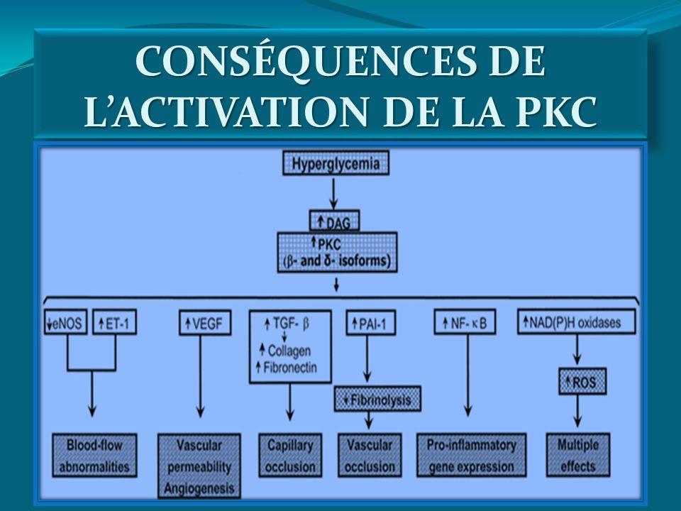 CONSÉQUENCES DE L'ACTIVATION DE LA PKC