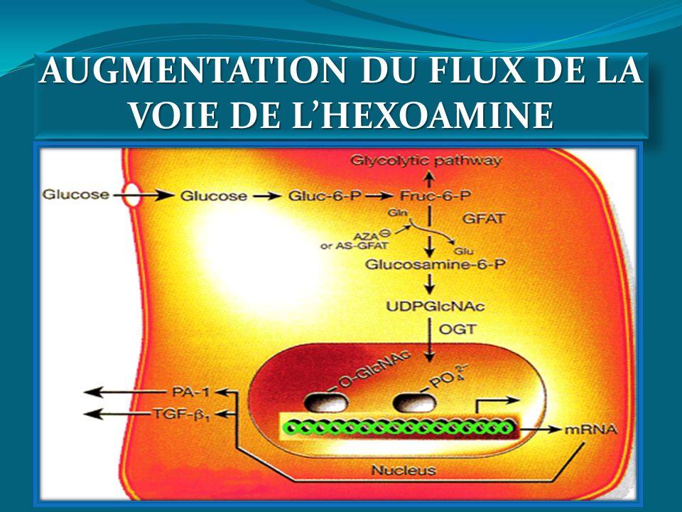 AUGMENTATION DU FLUX DE LA VOIE DE L'HEXOAMINE
