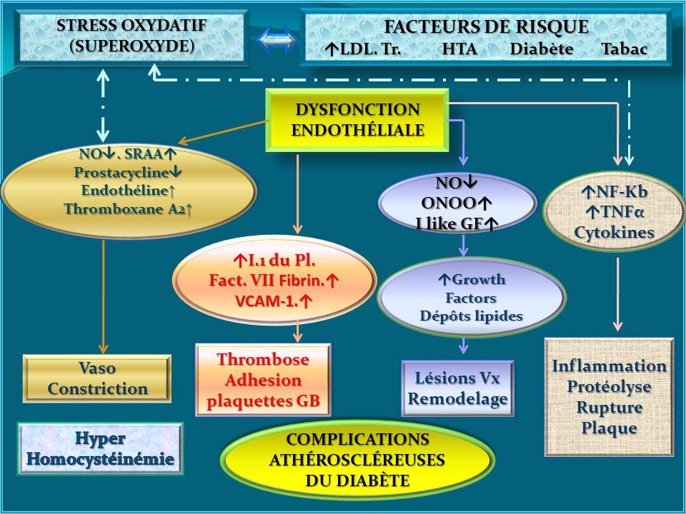 FACTEURS DE RISQUE STRESS OXYDATIF (SUPEROXYDE)