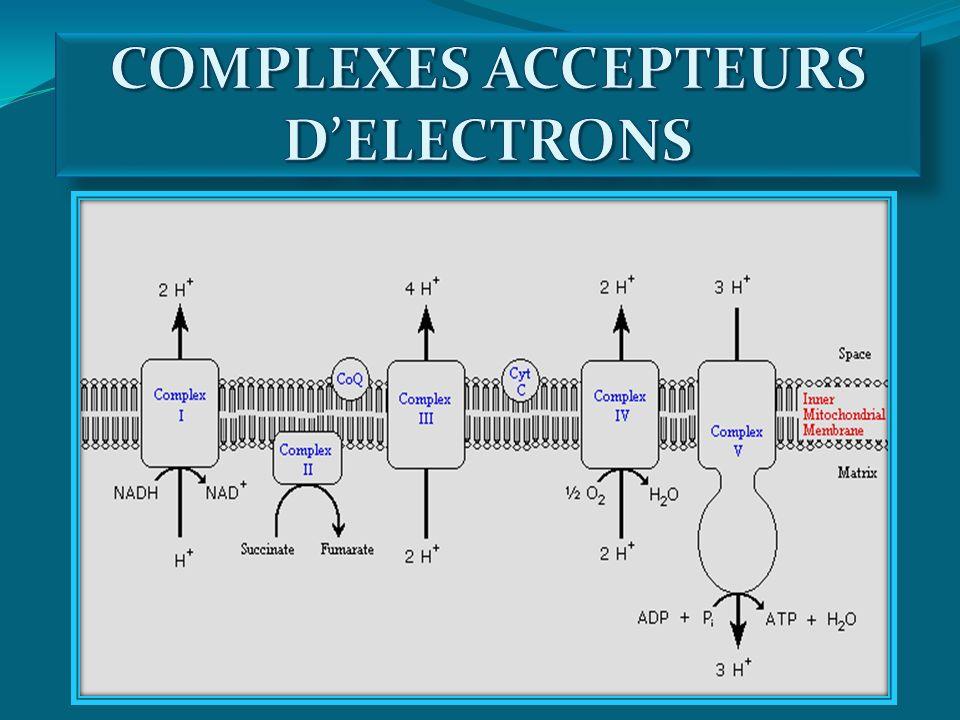 COMPLEXES ACCEPTEURS D'ELECTRONS