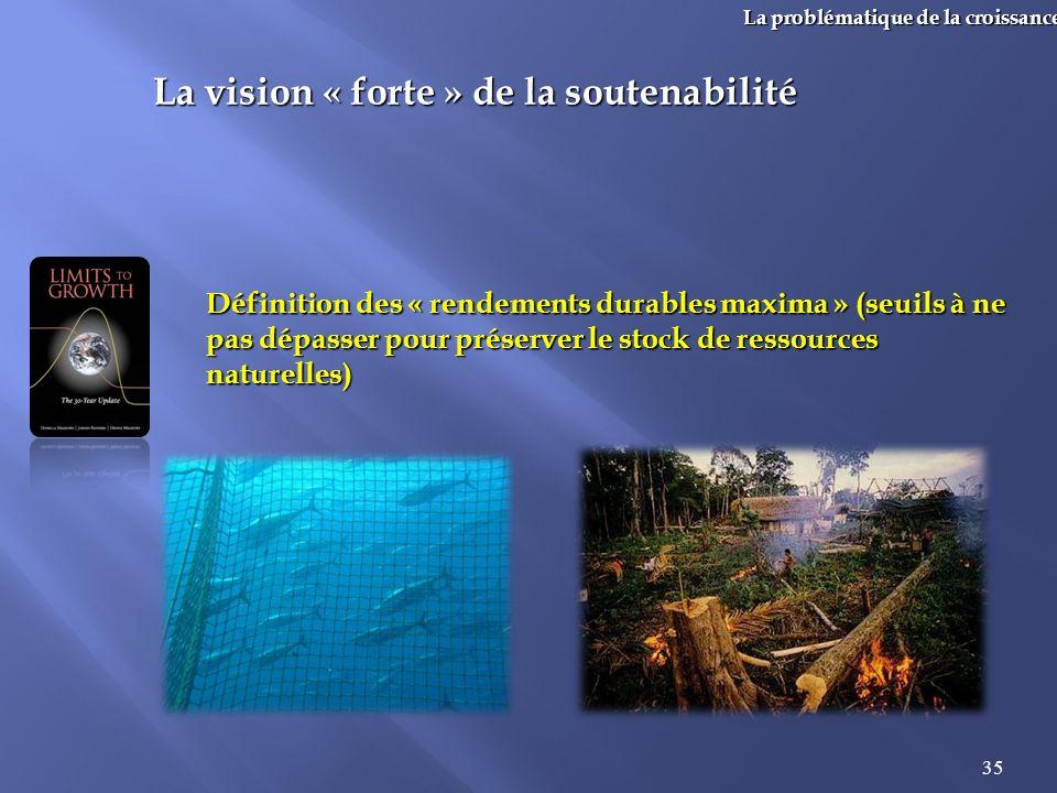 La vision « forte » de la soutenabilité