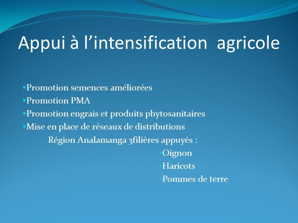 Appui à l'intensification agricole