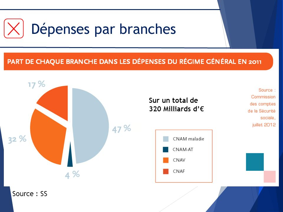 Dépenses par branches Sur un total de 320 Milliards d'€ Source : SS