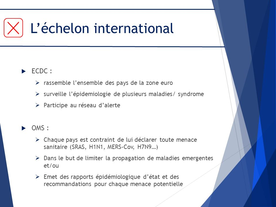 L'échelon international