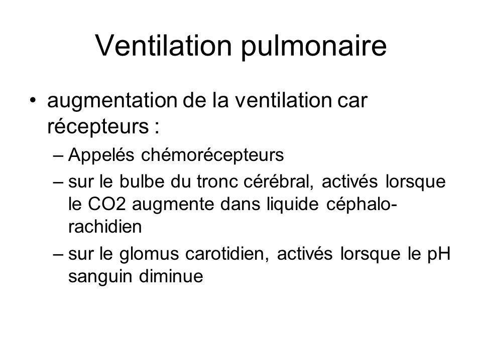 Ventilation pulmonaire