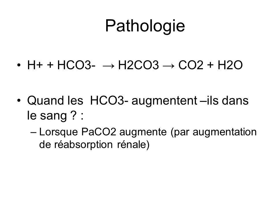 Pathologie H+ + HCO3- → H2CO3 → CO2 + H2O