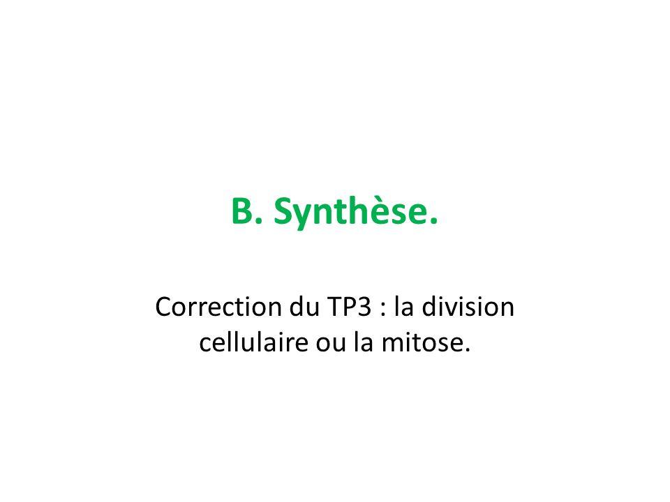 Correction du TP3 : la division cellulaire ou la mitose.
