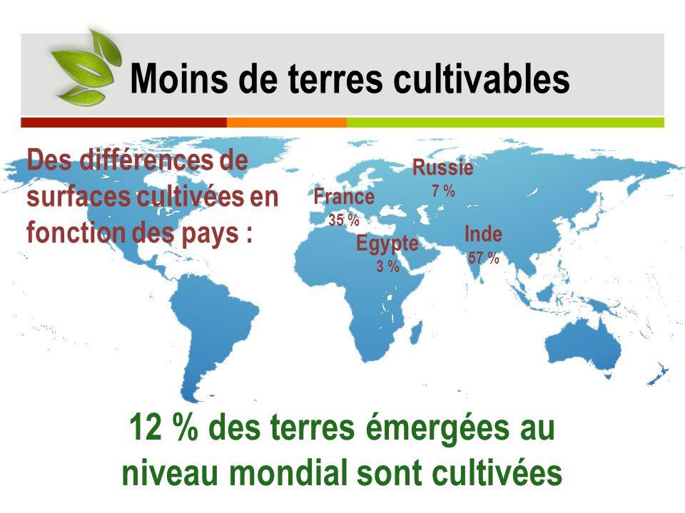 12 % des terres émergées au niveau mondial sont cultivées