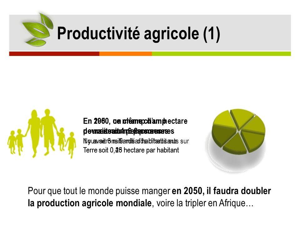 Productivité agricole (1)