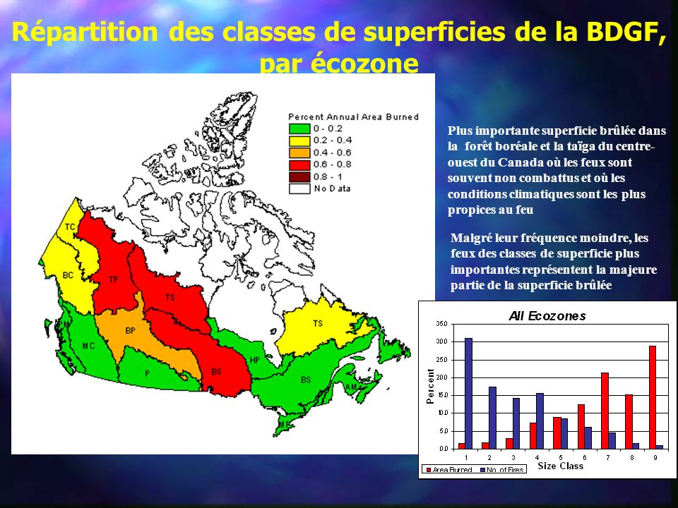 Répartition des classes de superficies de la BDGF, par écozone