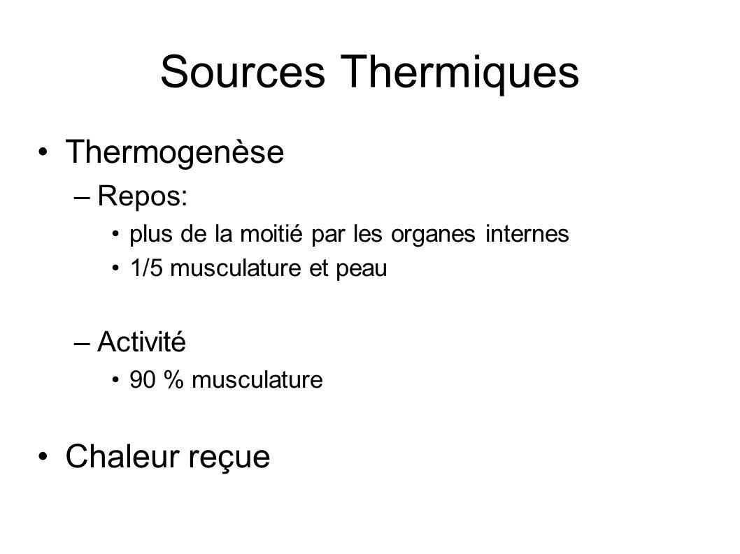 Sources Thermiques Thermogenèse Chaleur reçue Repos: Activité
