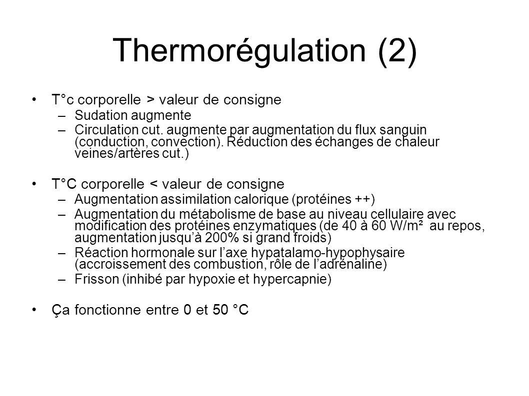 Thermorégulation (2) T°c corporelle > valeur de consigne