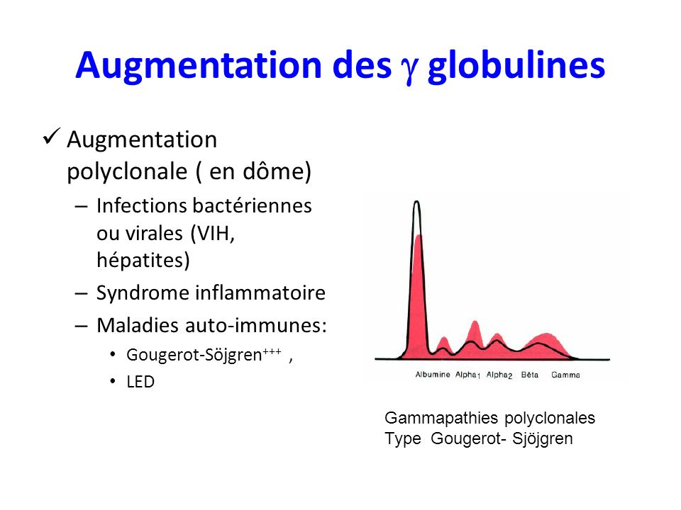 Augmentation des  globulines