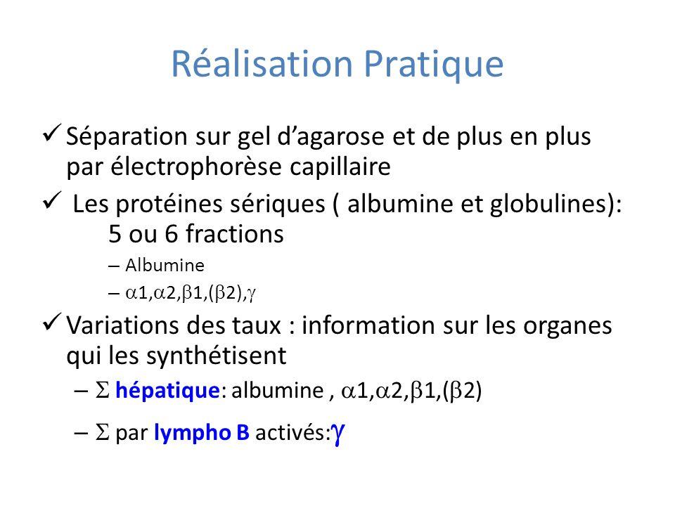 Réalisation Pratique Séparation sur gel d'agarose et de plus en plus par électrophorèse capillaire.