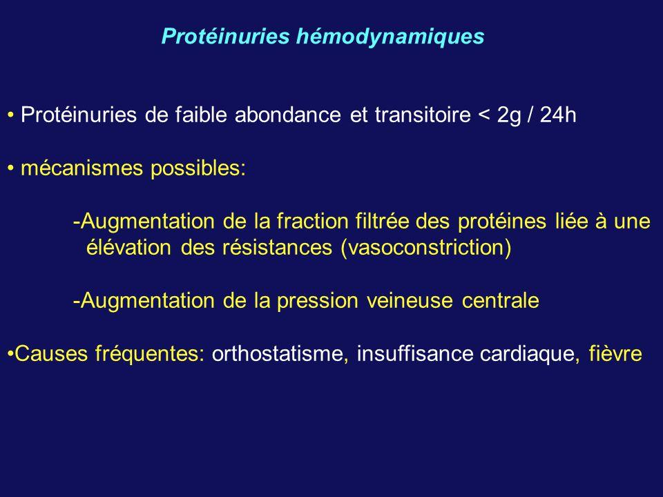 Protéinuries hémodynamiques