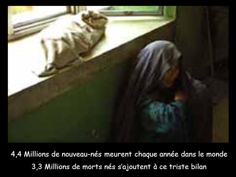 En 2005, l'Organisation Mondiale de la Santé (OMS) recensait 3,3 millions de mortinaissances (morts nés) par an dans le monde. Il s'ajoute à cela 4,4 millions de nouveau-nés qui meurent entre les premières heures de vie et le 28ème jour (3 millions la première semaine dont 2 millions le premier jour).
