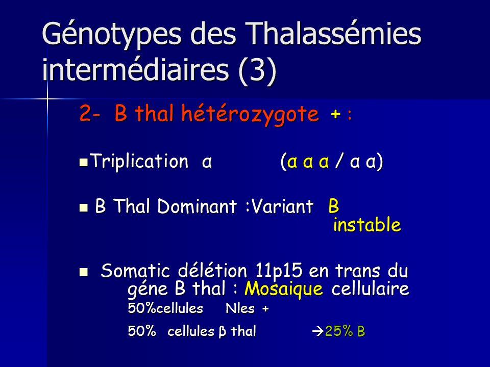 Génotypes des Thalassémies intermédiaires (3)