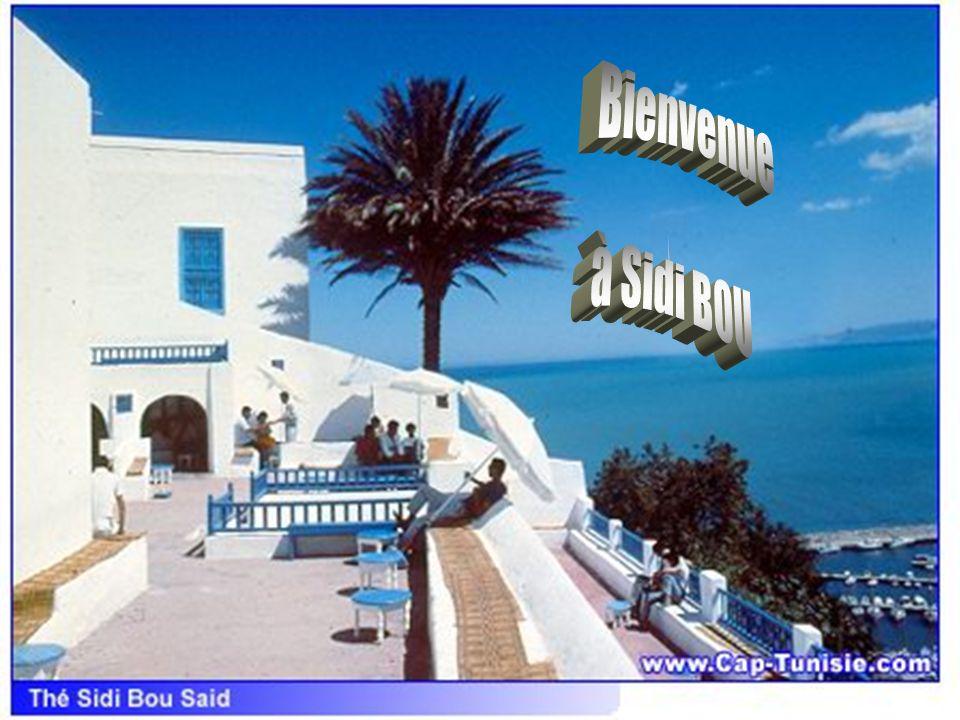 Bienvenue à Sidi BOU