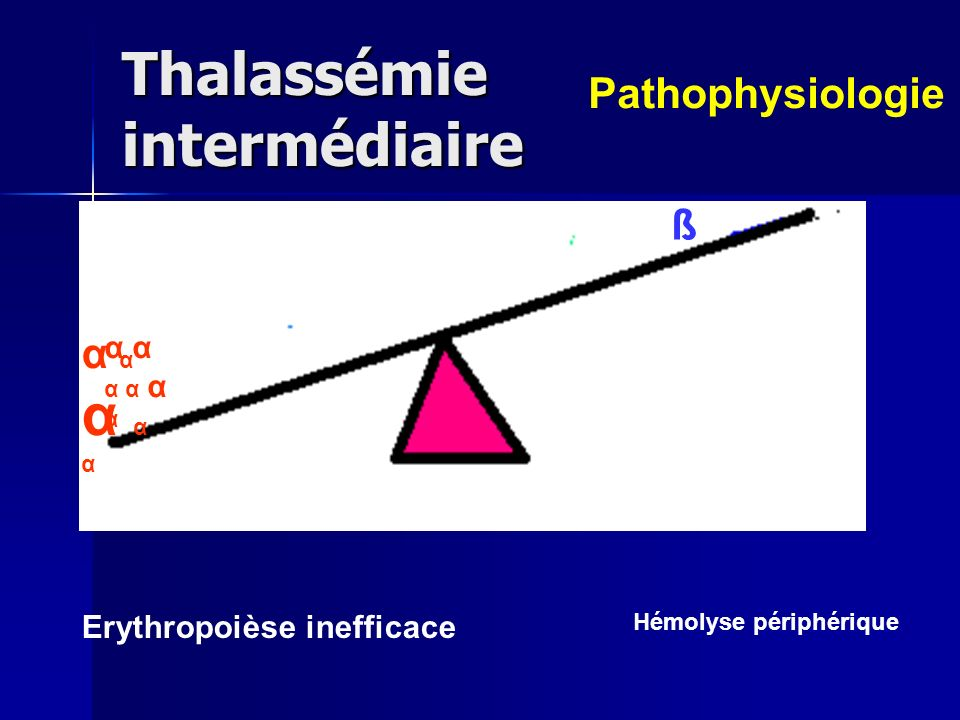 Thalassémie intermédiaire