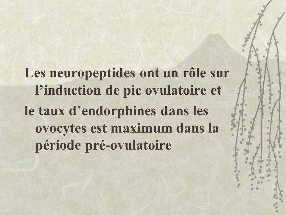 Les neuropeptides ont un rôle sur l'induction de pic ovulatoire et