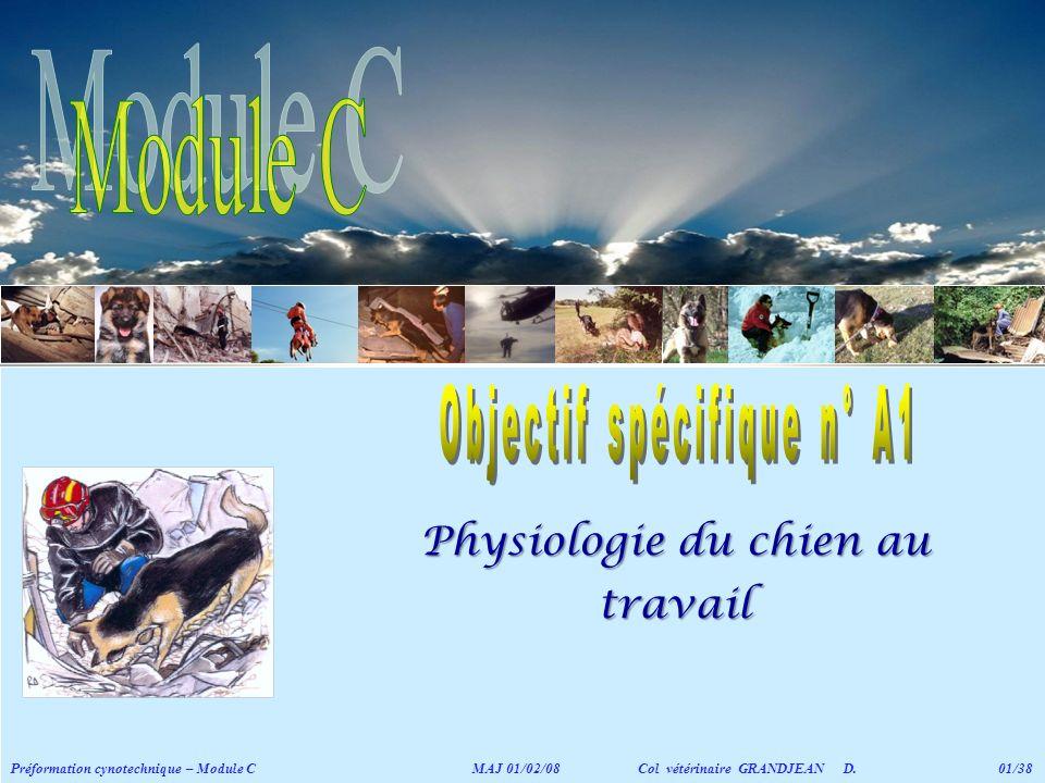 Module C Physiologie du chien au travail Objectif spécifique n° A1
