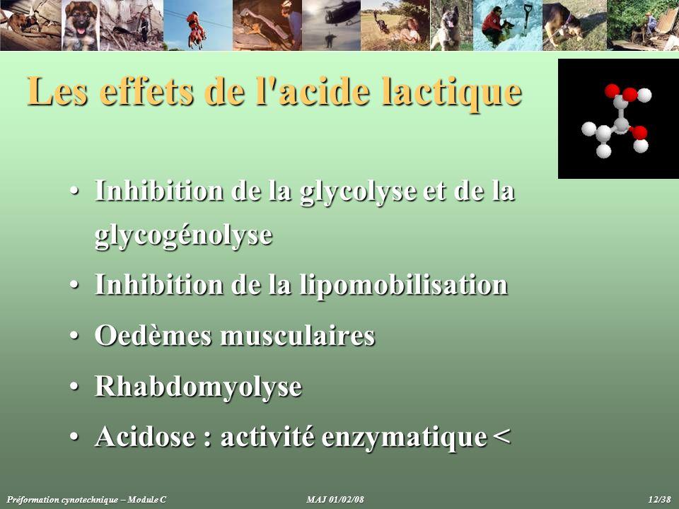 Les effets de l acide lactique