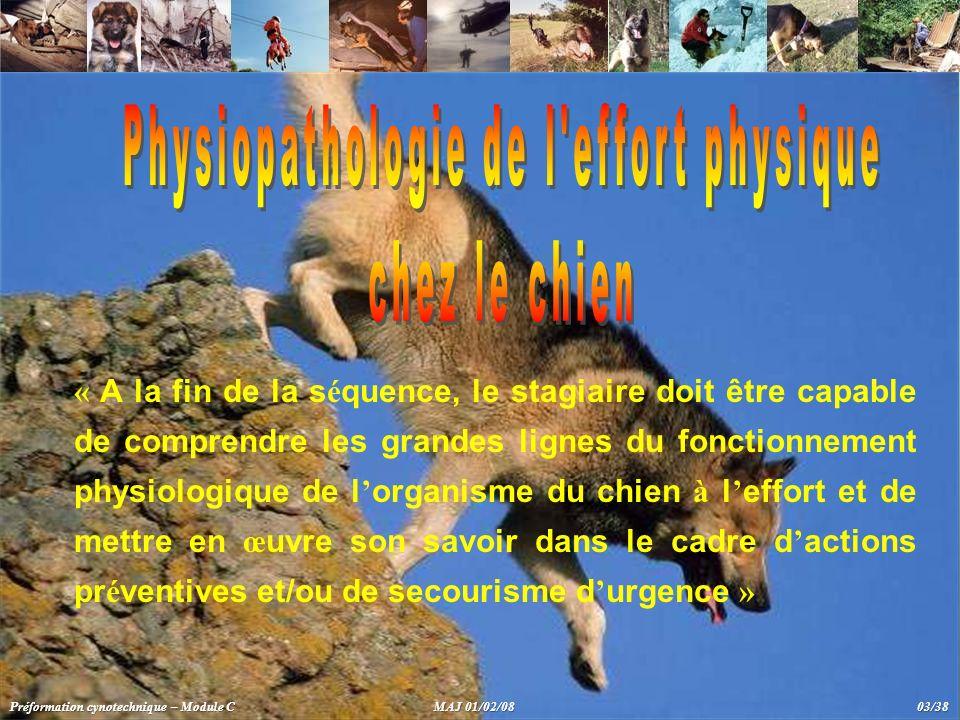 Physiopathologie de l effort physique