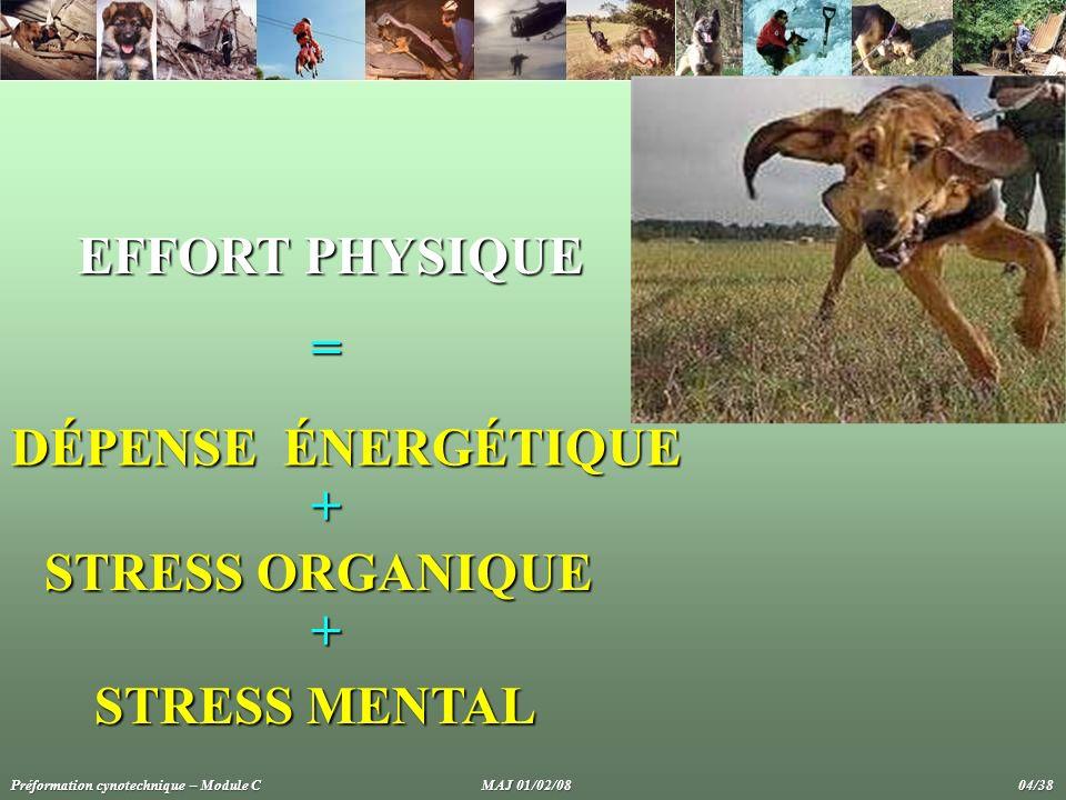EFFORT PHYSIQUE = DÉPENSE ÉNERGÉTIQUE + STRESS ORGANIQUE +