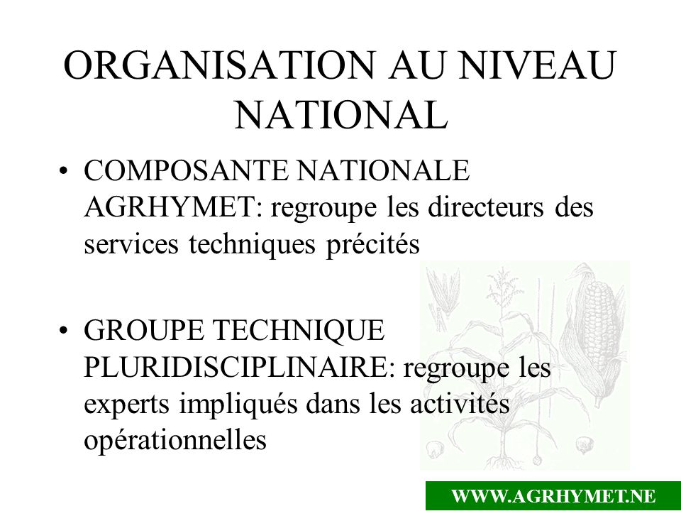 ORGANISATION AU NIVEAU NATIONAL