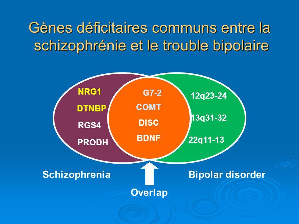 Gènes déficitaires communs entre la schizophrénie et le trouble bipolaire