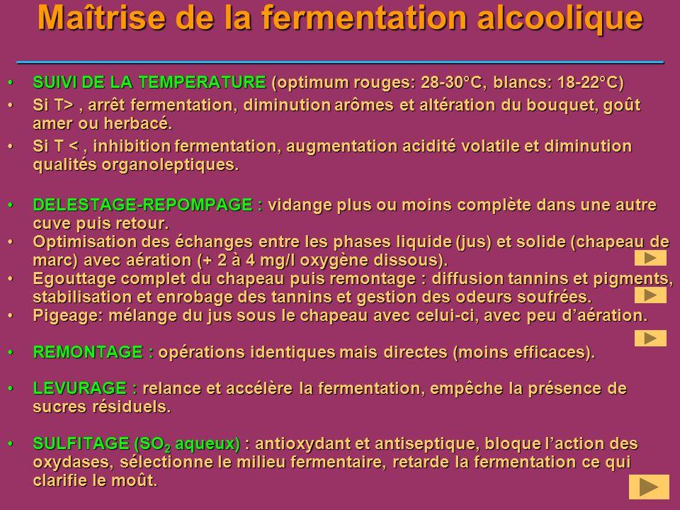 Maîtrise de la fermentation alcoolique ___________________________________________________