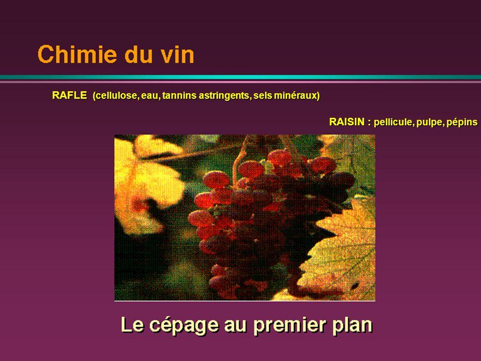 RAFLE (cellulose, eau, tannins astringents, sels minéraux)