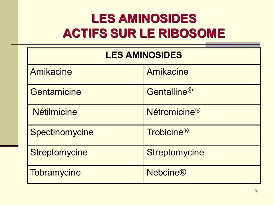 LES AMINOSIDES ACTIFS SUR LE RIBOSOME