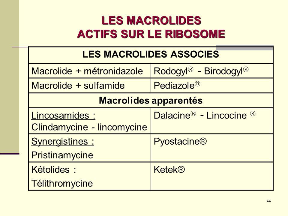 LES MACROLIDES ACTIFS SUR LE RIBOSOME
