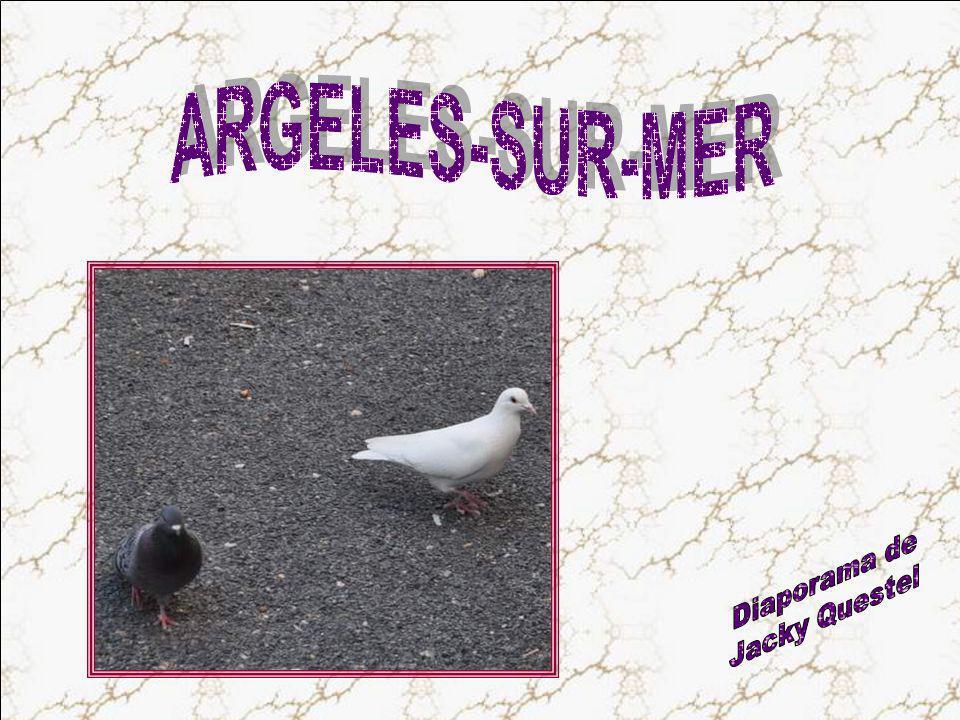 ARGELES-SUR-MER Diaporama de Jacky Questel