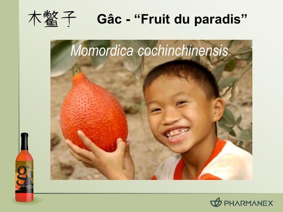 Gâc - Fruit du paradis