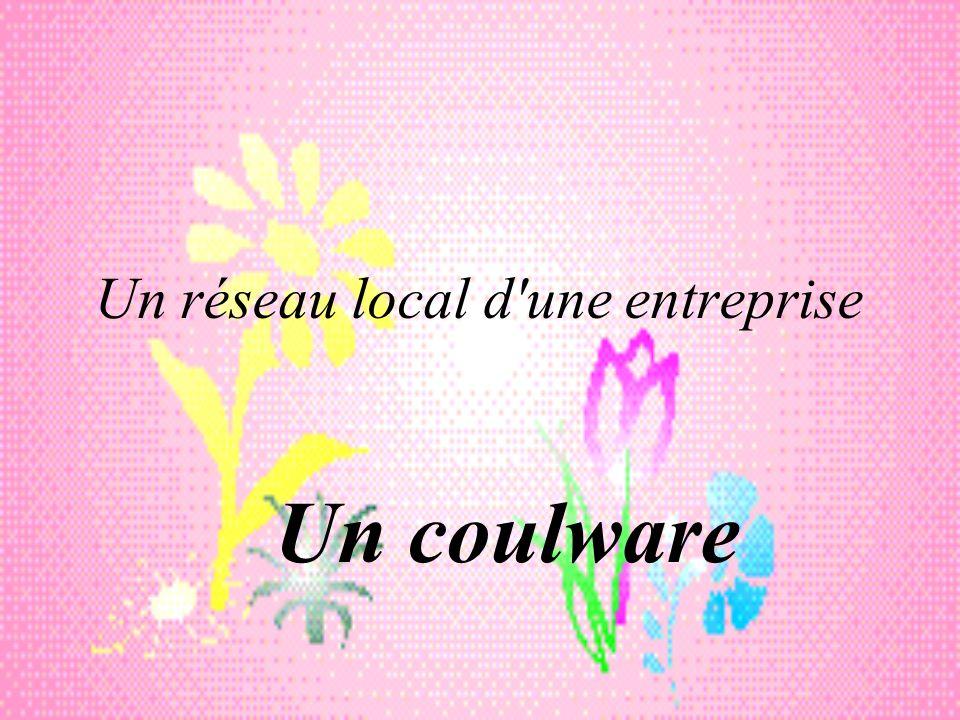 Un réseau local d une entreprise