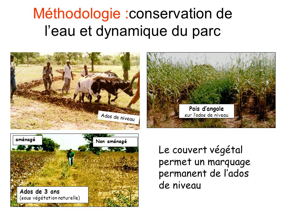 Méthodologie :conservation de l'eau et dynamique du parc