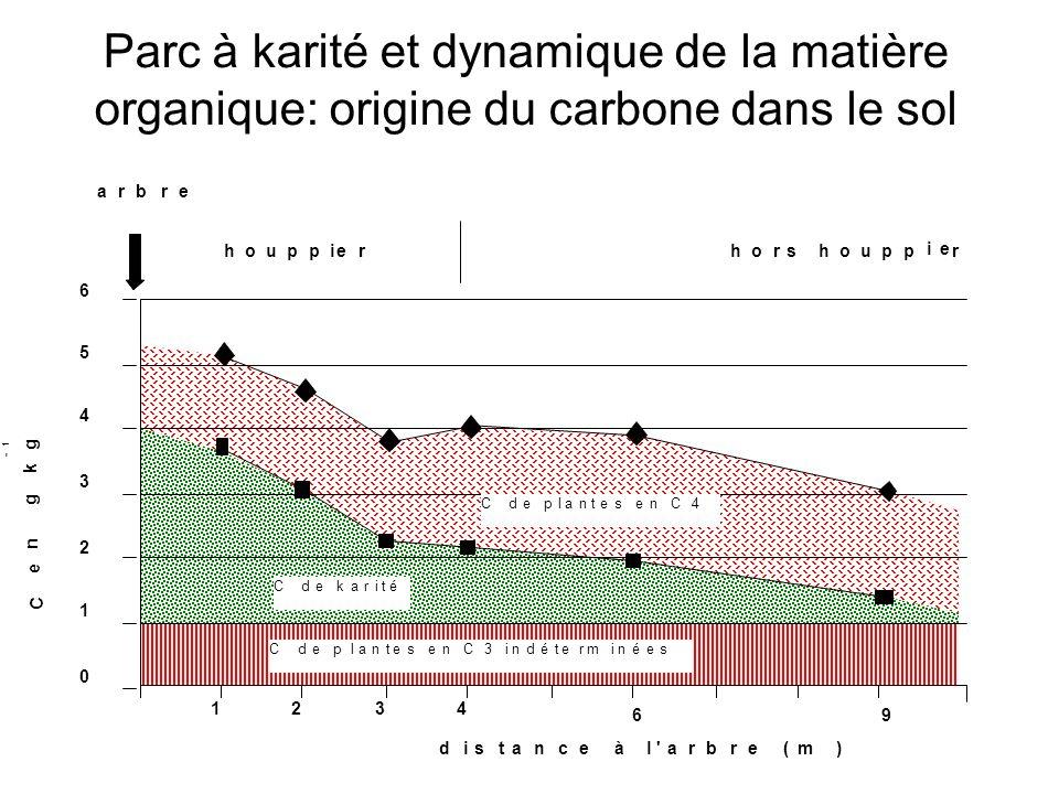 Parc à karité et dynamique de la matière organique: origine du carbone dans le sol