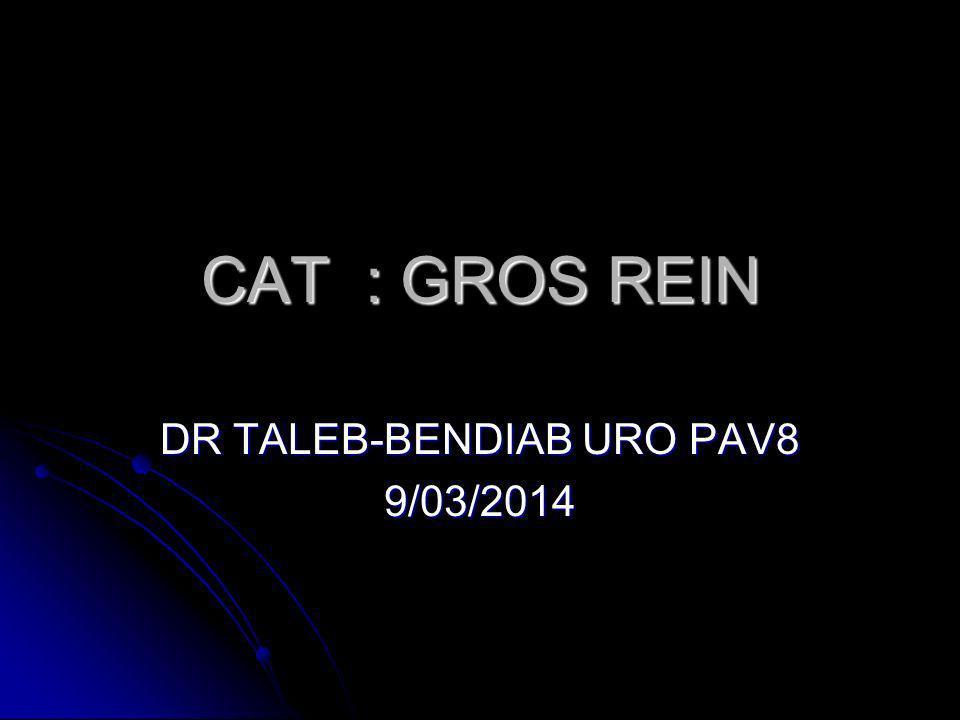 DR TALEB-BENDIAB URO PAV8 9/03/2014