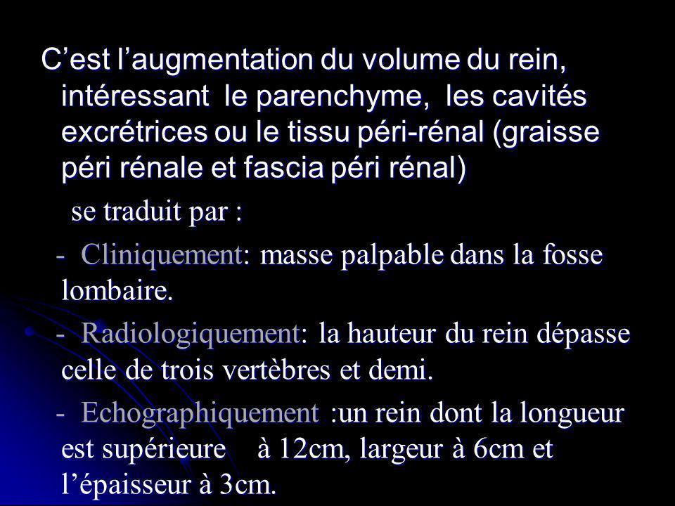 C'est l'augmentation du volume du rein, intéressant le parenchyme, les cavités excrétrices ou le tissu péri-rénal (graisse péri rénale et fascia péri rénal)