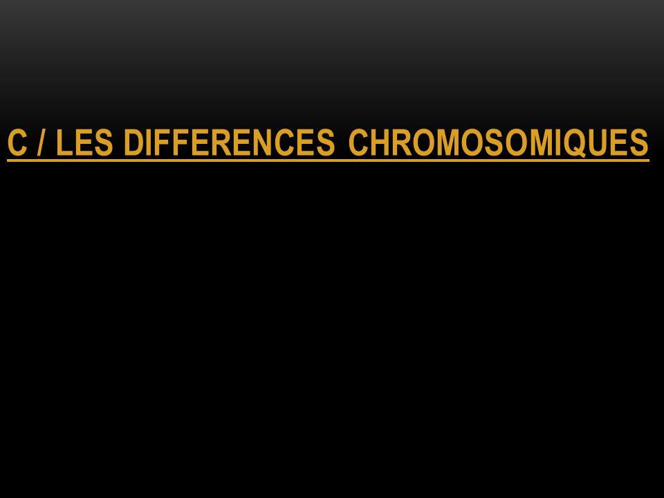 C / LES DIFFERENCES CHROMOSOMIQUES