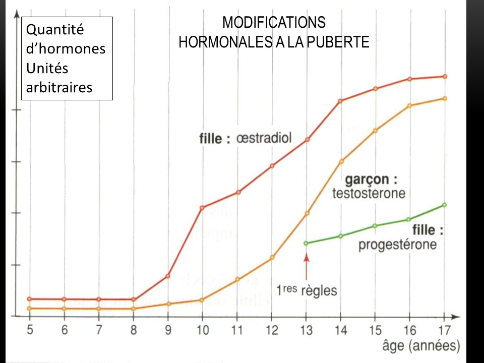 MODIFICATIONS HORMONALES A LA PUBERTE