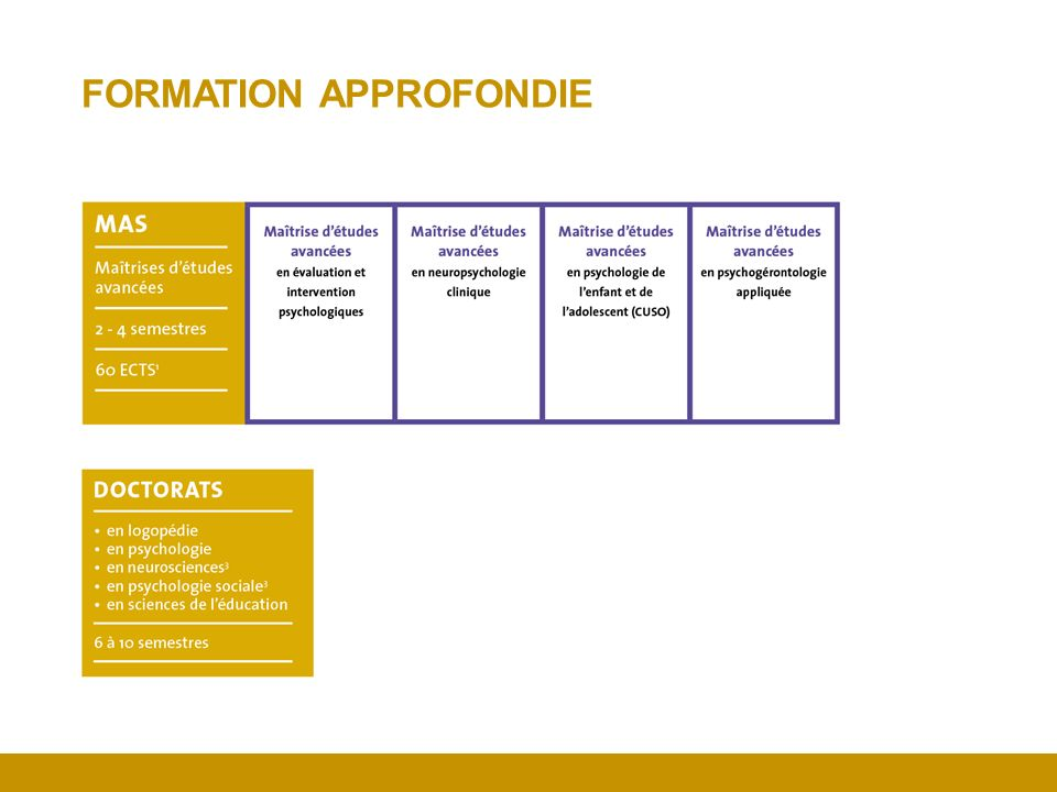 FORMATION APPROFONDIE