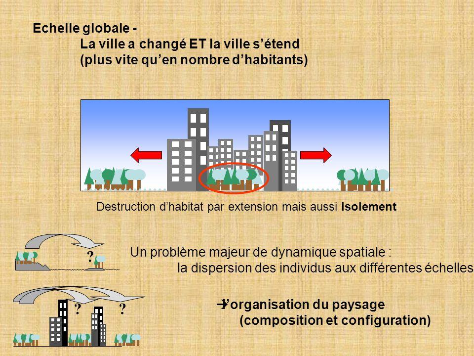 Echelle globale - La ville a changé ET la ville s'étend