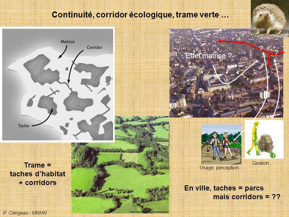 taches d'habitat + corridors